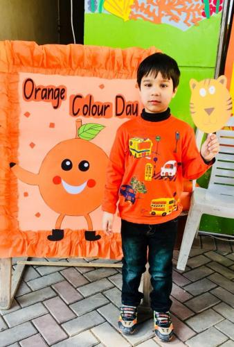 Orange Color Day 2017
